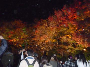 京都 038