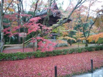 京都 090