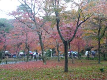 京都 086