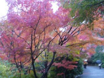 京都 099