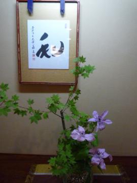 日韓文化交流会2009 015