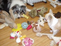おもちゃに囲まれて