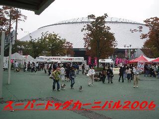 20061105093614.jpg