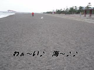 20070104160645.jpg