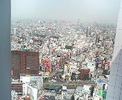 お金が飛び交ってなさそうな時間帯の歌舞伎町