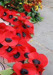 wikipedia remembrance poppy