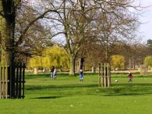 芝の上を自転車、ボール運動