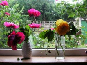 poppies and yellow roses an petit strawberries