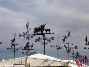 風見動物達