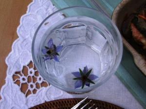 氷詰めボリッジの花