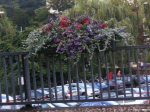 駐車場の柵にも