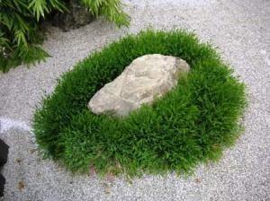 日本庭園の石と周りの草