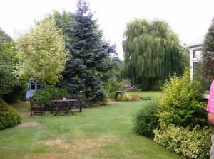 家の左手から庭へ
