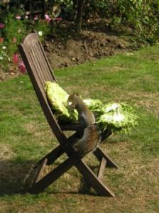 椅子に移した直後