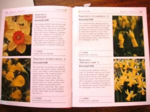 RHS図鑑のページ