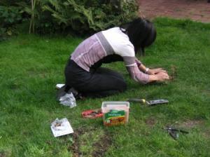 芝生の下に