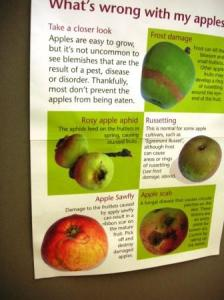 りんご問題アドバイス