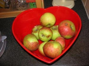 落ちてきたりんごを保存中