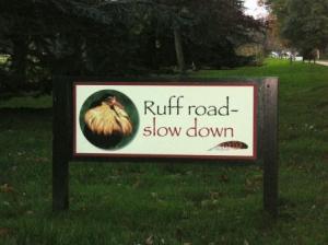 ラフ・ロード標識