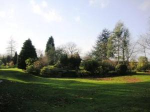 広大な庭の一角