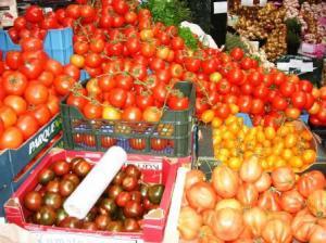 ありとあらゆるトマトが集合