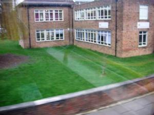 女子校の芝生