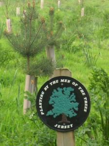 ここにも木を植える男たち