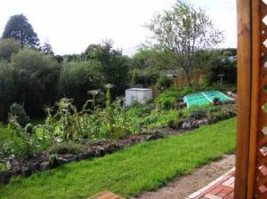 野菜畑を斜面に作って