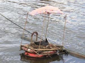 日傘を差すバン