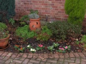 花壇に花を植えましょう