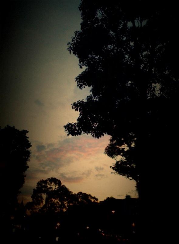 photo1029.jpg