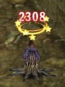 20070124141831.jpg