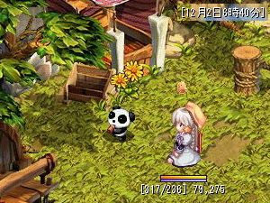 猫熊猫の新月(Lv1)