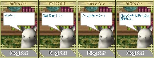 blogpet045.png