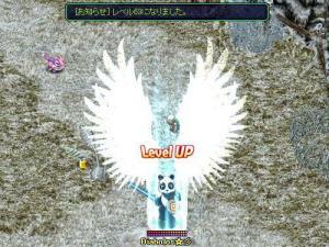 レベル63UP!(5月9日 2:14)