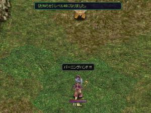レベル46UP!(2月5日)