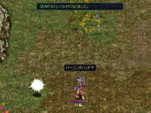 レベル47UP!(2月7日)