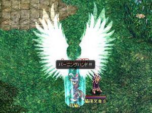 レベル45UP!(2月3日撮影)