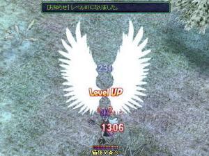 レベル81UP!(8月11日 0:55)
