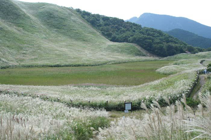 曽爾高原 お亀池