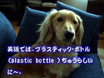 プラスティックボトル
