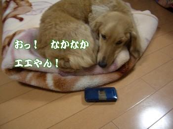 携帯電話2
