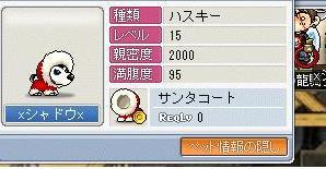 20060128160001.jpg