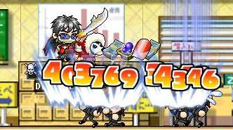 Maple0122