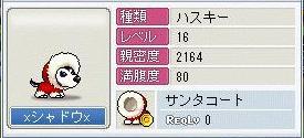 Maple0136