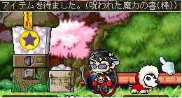 Maple0138