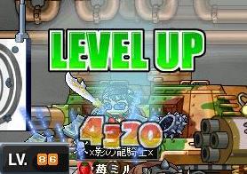 Maple0289