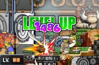 Maple0293