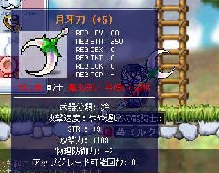 Maple0404