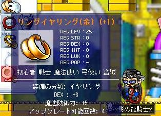Maple0411